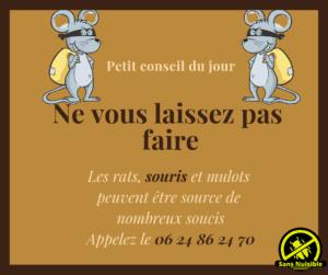 Éradiquer les Rats